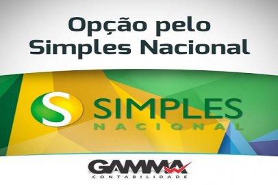 OPÇÃO PELO SIMPLES NACIONAL 2019